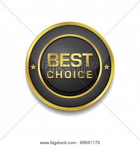 Best Choice Glossy Shiny Circular Vector Button