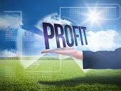 Businesswomans hand presenting the word profit against sunny green landscape poster