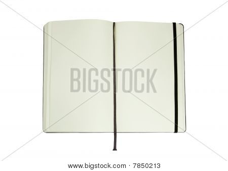 Moleskin On A White Background