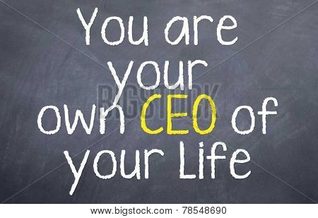 Your are your own CEO
