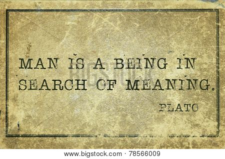 Meaning Plato