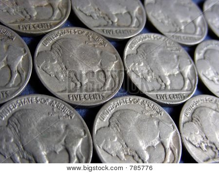 Buffalo Nickels (Indian Head), US Currency poster