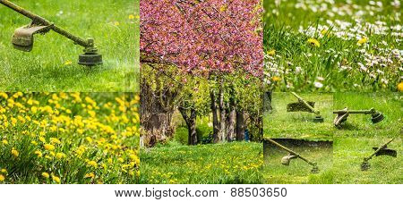 Collage Images Work In Garden And Lawn With  Gasoline Trimmer