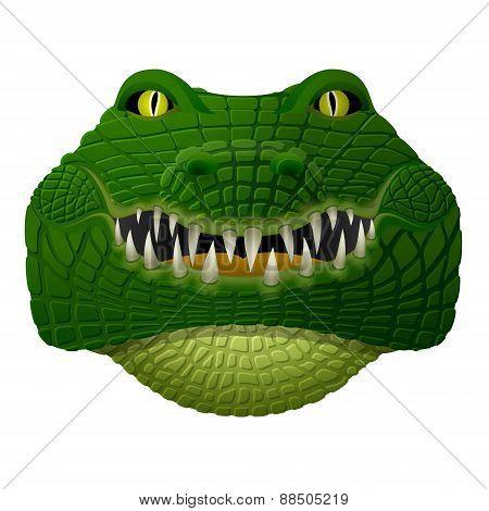 Realistic Crocodile Face Looks Ahead