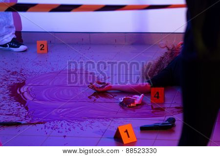 Picture of murder scene with killed woman poster