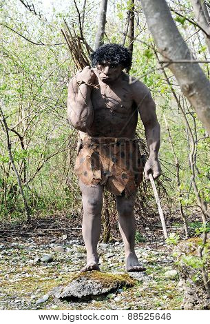 Model Of Neanderthal Man Carrying Bundle Of Sticks