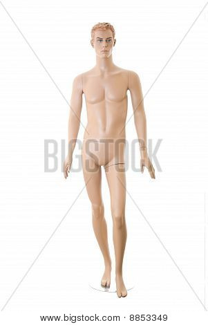 Male Mannequin | Isolated