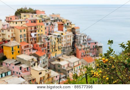 Scenic view of colorful houses of Manarola village, Cinque Terre, Italy poster