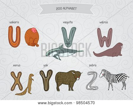 Cute cartoon funny zoo alphabet in vector. U, v, w, x, y, z letters. Uakaris, vaquita, walrus, xerus