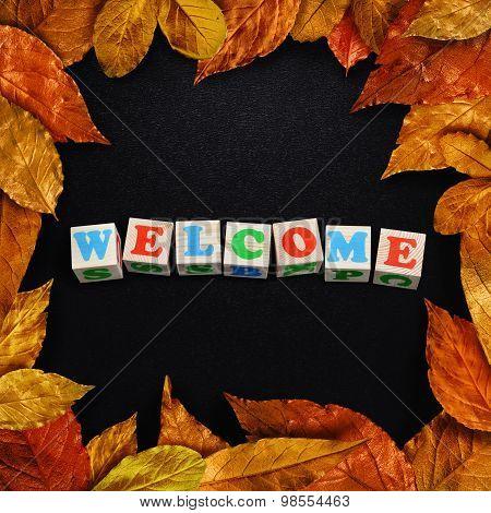 autumn leaves framed schoolboard.
