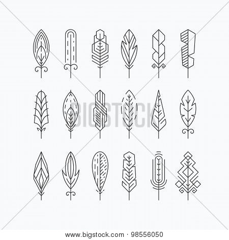 Graphical Line Feathers Set.