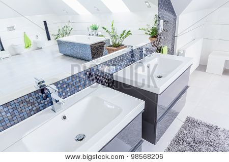 Close-up of two porcelain basins in modern bathroom poster