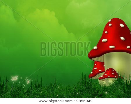 Fairy Fly Agaric