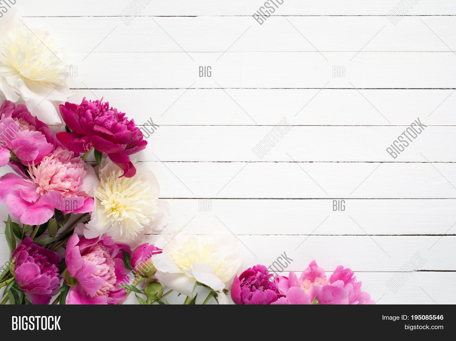 Floral Frame Image Photo Free Trial Bigstock