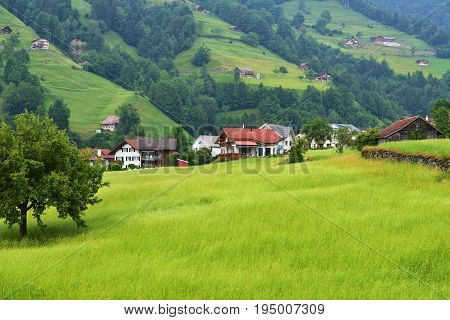Beautiful view of idyllic mountain scenery in the Alps with traditional chalets in fresh green alpine meadows in Uri canton nearby Altdorf city Switzerland