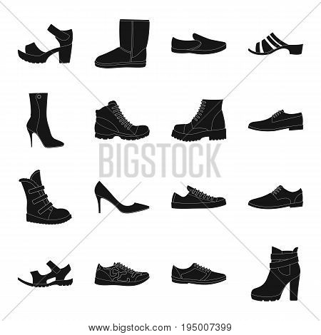 Shoes, style, heel and other types of shoes. Different shoes set collection icons in black style vector symbol stock illustration.