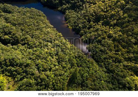 Aerial View of River in Rainforest, Latin America