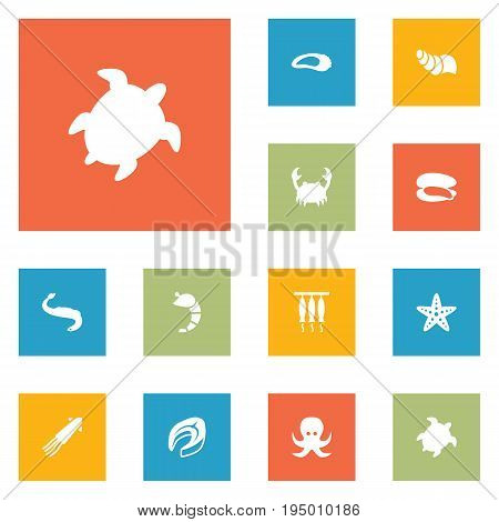 Set Of 12 Food Icons Set.Collection Of Shell, Calamary, Devilfish And Other Elements.