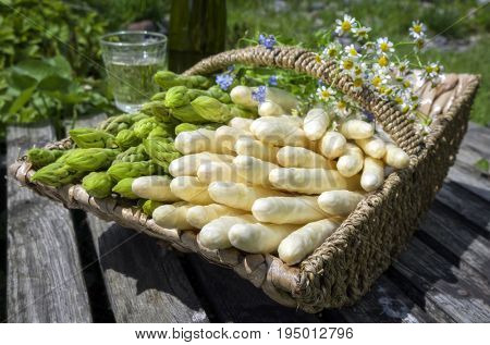 Fresh raw white and green asparagus as close-up in a basket outdoor at a wooden bridge