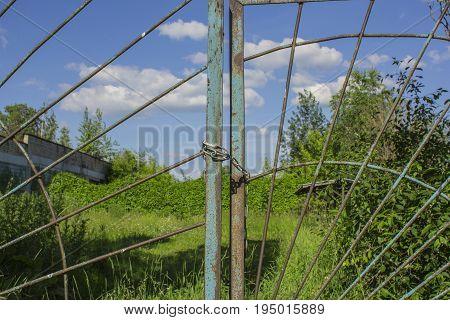 Green grass and trees behind an old metal fence with a chain