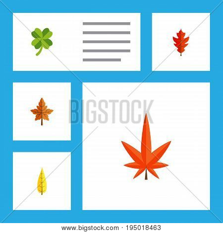 Flat Icon Leaves Set Of Aspen, Alder, Maple And Other Vector Objects. Also Includes Frond, Oaken, Maple Elements.