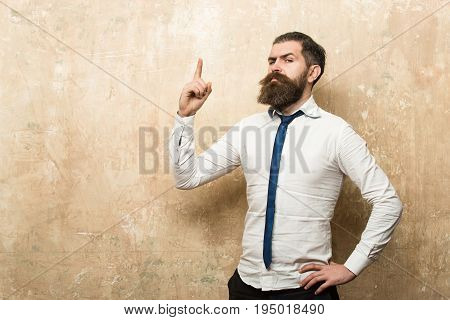 Man Or Hipster With Long Beard On Serious Face