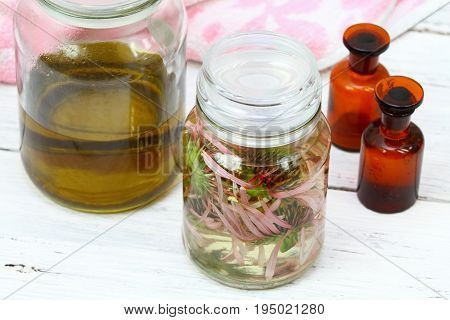 Homemade alternative medicine Echinacea tincture in front herbal oil ready tinctures from herbs and spirit