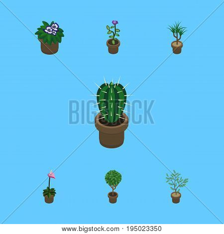 Isometric Flower Set Of Fern, Grower, Flowerpot And Other Vector Objects. Also Includes Plant, Flowerpot, Houseplant Elements.