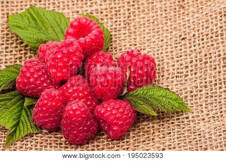raspberry and burlap cloth. Food berry -