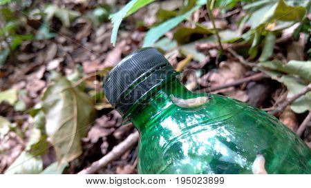 Slug on the bottle in the woods a bright summer day close-up blurred background