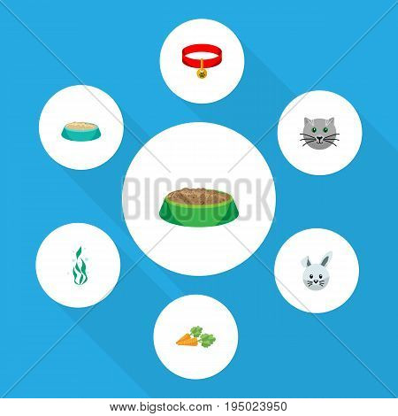 Flat Icon Animal Set Of Bunny, Kitty, Feeding And Other Vector Objects. Also Includes Necklace, Kitty, Plant Elements.