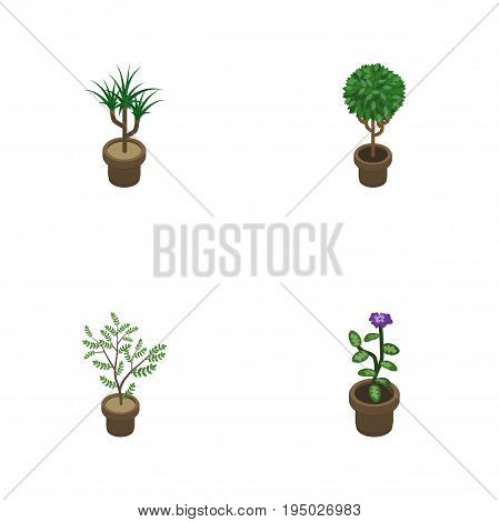 Isometric Flower Set Of Tree, Houseplant, Flower And Other Vector Objects. Also Includes Flowerpot, Plant, Botany Elements.