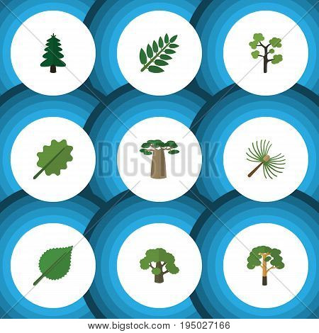 Flat Icon Ecology Set Of Wood, Alder, Acacia Leaf And Other Vector Objects. Also Includes Leaves, Wood, Rosemary Elements.