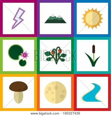 Flat Icon Nature Set Of Tributary, Champignon, Lotus And Other Vector Objects. Also Includes Berry, River, Pinnacle Elements.