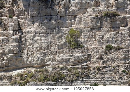 Rock wall cliff with green trees on Greek island Zakynthos on sunny hot day.