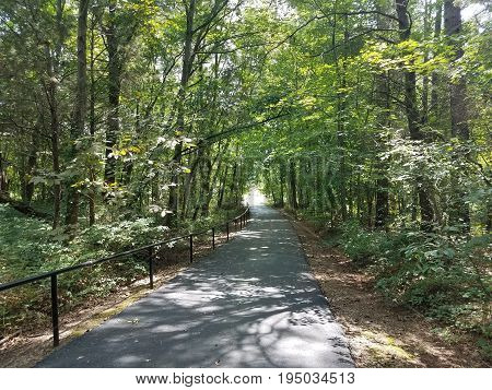 black metal bar or railing in the forest with an asphalt trail