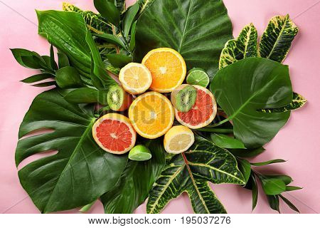 Beautiful composition with variety of exotic fresh plants and fruits on pink background, top view