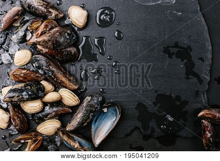 Mussels and clams over a stone background. Food frame.Top view. Copy space.
