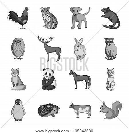 Deer, tiger, cow, cat, rooster, owl and other animal species.Animals set collection icons in monochrome style vector symbol stock illustration .
