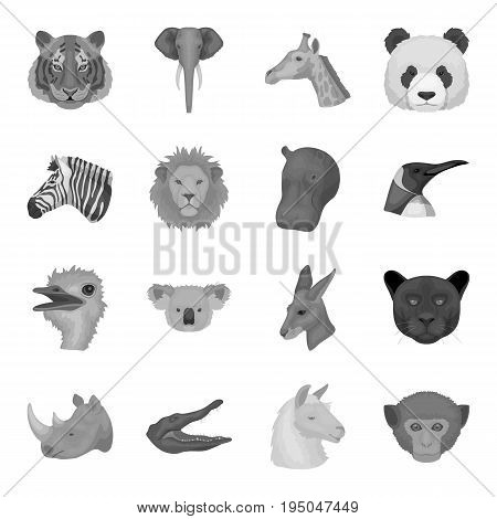 A chair, a beer, a sign, items for a pub.Pub set collection icons in monochrome style vector symbol stock illustration .
