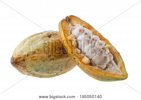 Cacao Fruit, Raw Cacao Beans, Cocoa Pod On White Background.
