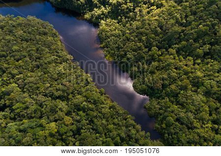 River in Rainforest, Latin America