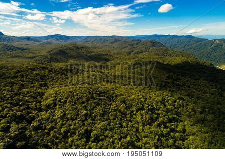 Aerial View of a Landscape of Rainforest in South America
