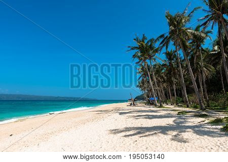 BORACAY WESTERN VISAYAS PHILIPPINES - JANUARY 14 2015: Huge coconut trees tents white sand and green sea composes the beautiful Puka Beach.