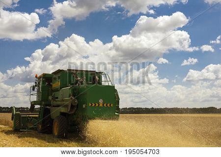 Combine machine is harvesting oats on farm field. combine harvester working on a wheat field. Combine harvester cuts the field of mature ripe yellow wheat