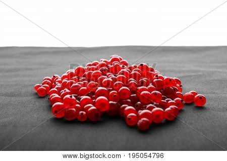 Close-up of a colorful red currant, isolated on a white background. Tasteful healthful cranberry or currant  for vegan breakfast.  Fresh juicy berries.