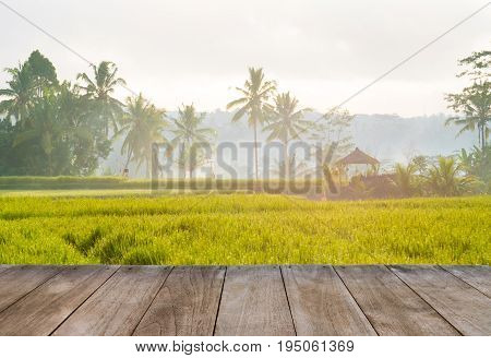 Perspective Empty Wooden Table In Front Of Rice Fields And Coconut Trees