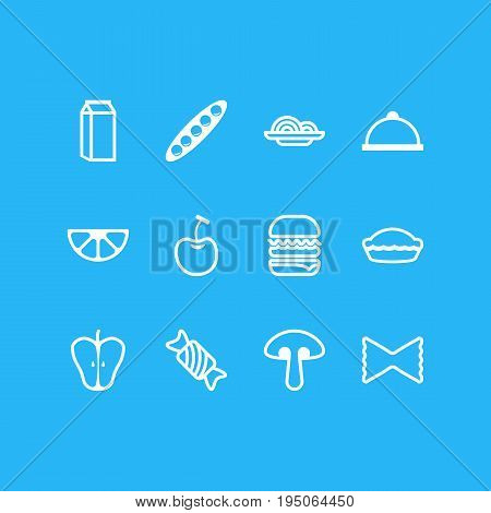 Vector Illustration Of 12 Meal Icons. Editable Pack Of Macaroni, Jonagold, Berry Type And Other Elements.