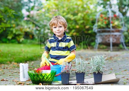 Adorable cute little kid boy planting flowers in home's garden or farm, on warm sunny spring or summer day. Child having fun with gardening. Kid learning being green. Outdoors. Environment concept.