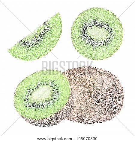 Tropical Nature Fresh Colorful Stippling Fruit Isolated Vector Green Kiwi